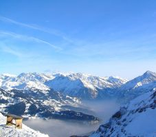 Snow View Swiss by Jenvanw