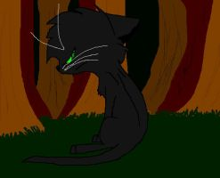 HollyLeaf by NightTheKittyKat