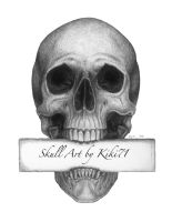 Skull Art Sign by kiki71