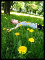 through the dandelions by antiMark