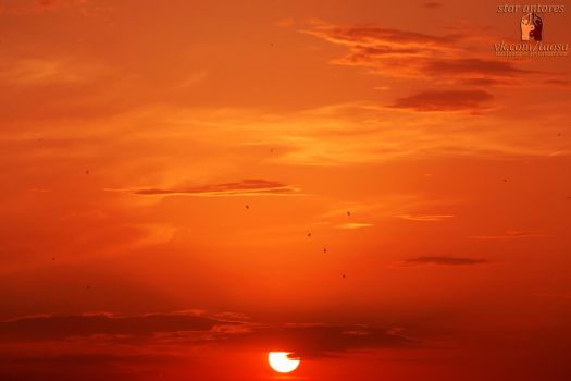 Sunset#1 by star1antares