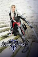 Kingdom Hearts Sephiroth 1 by Etienne-Magique