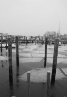 Winter At the Marina by JoanneAugustine