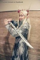 Thranduil the elvenking cosplay by seawaterwitch