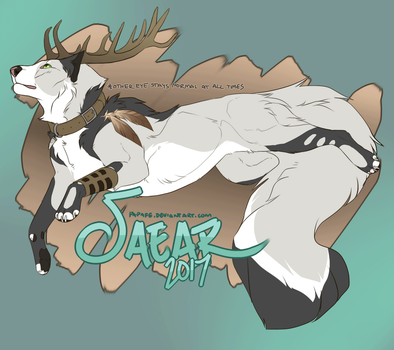 saear ref 2017 by papafe
