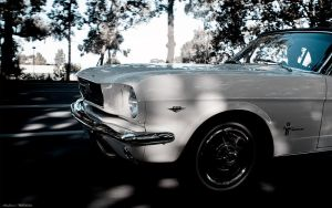 Crusins Mustang by aNdre-W
