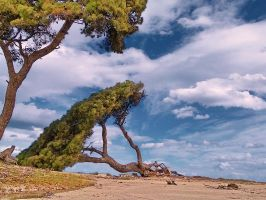 nice day to die by panos-gr