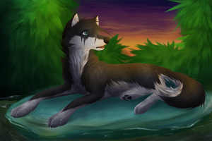 I'm on a rock by GreyeWolf