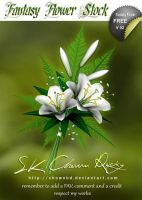 Fantasy Flower Stock V 02 by SK-DIGIART