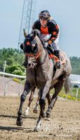 Horse Racing 511 by JullelinPhotography
