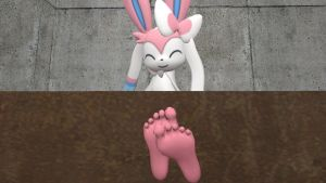 Sylveon's soles 4 (request) by hectorlongshot