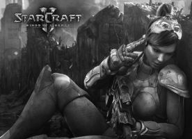 StarCraft 2 WOL Wall by LiLmEgZ97