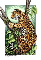 Jaguar Card - WCOTW by XianJaguar
