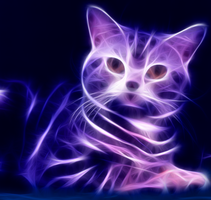 Fractalius Cat by Jollepoker