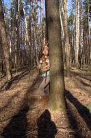 Forest Victory 15 by Panopticon-Stock