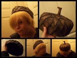 Terence's Hat ( Acorn Top ) by jessthecase88