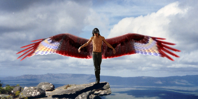 Wingspan Feathered by moondragonwings