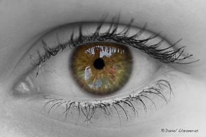 Colorful eye reflection by dllavaneras