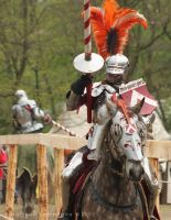 Bnfest 2012 - Knight tournament on horseback XIV by RivenPine
