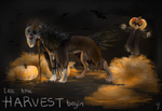 Scarecrows and harvest songs by VonMorjo