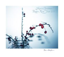 Marry Christmas and HNY 2011 by DanStefan