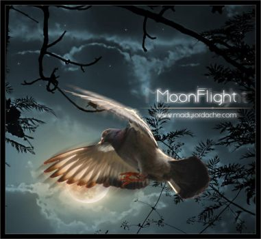 MoonFlight: PS Tutorial by temporary-peace