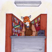 The Librarian by RABBI-TOM