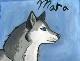 Mara painting by xXMeganMavelousXx