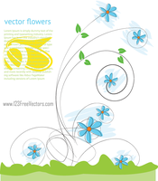 Beautiful Flowers Vector Background by 123freevectors