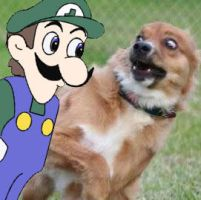Weegee will find You by Angeldhan