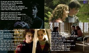 Harry Hermione Banner by here4theparty