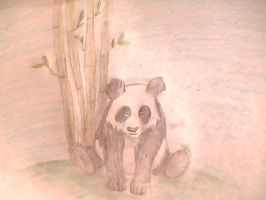 Panda Bear by SuperSayainCat