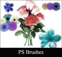 Floral Photoshop Brushes by Lileya