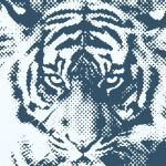 Tiger halftone by BDStudio