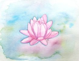 Water Lily by Sparkleno