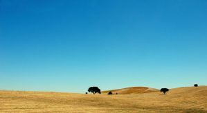 Alentejo by BcauseSheExists