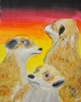 Meerkats at Sunset by Jan-Omega
