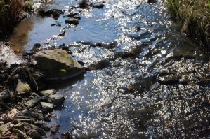 Sparkling river by Mecarion