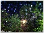 globes of light by Achello