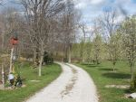 Old Gravel Road by Maru-Kaite-ftw