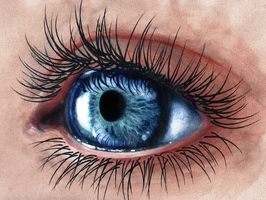 Eye Study by TulipaCrown
