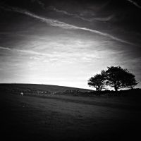 under a lonely sky by RickHaigh
