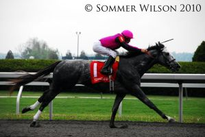 Keeneland Track 2010 1 by zeeplease