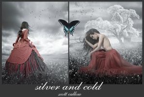 silver and cold by WCS-Wildcat