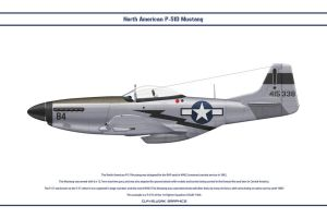 Mustang USAAF 1st FS 1 by WS-Clave