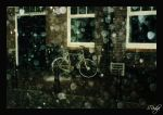 Amsterdam Rain by sridge