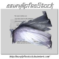 3D object - wings by AzurylipfesStock