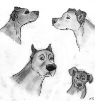 Pit Sketches by wahyawolf