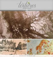 Textures - Nature by So-ghislaine