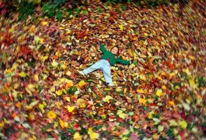 Sean in Leaves by patindaytona